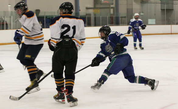 IceHockeyLiu2014-01 2