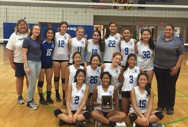 WCHS Varsity Volleyball team