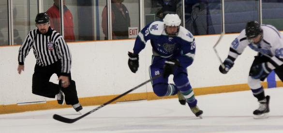 IceHockey2013-12